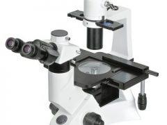 Microscópio Biológico Invertido BEL INV-100
