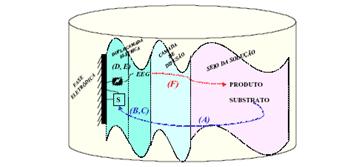 Electrasyn e os conceitos eletroquímicos em síntese orgânica 5