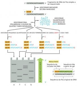 Sequenciamento de DNA por Sanger