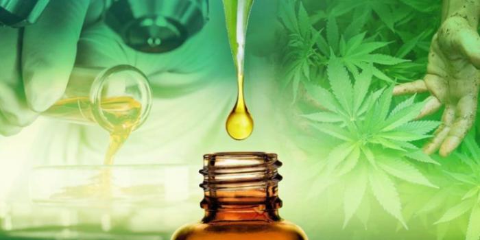 Preparação da cannabis medicinal por digestão de micro-ondas 4
