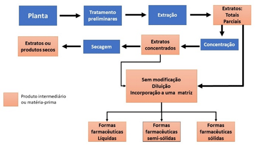 Fluxograma das etapas de preparação até o produto final - cannabis medicinal