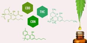 Compostos terapeuticamente ativos - canabinóides