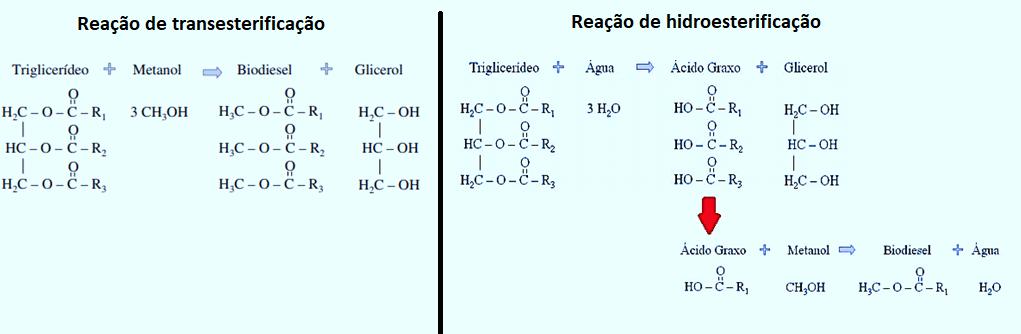 Reação de transesterificação e hidroesterificação